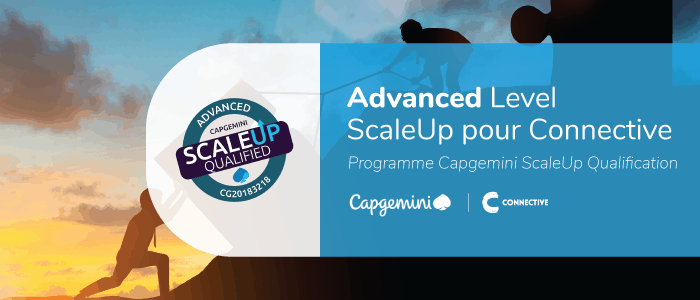 Capgemini ScaleUp Qualification
